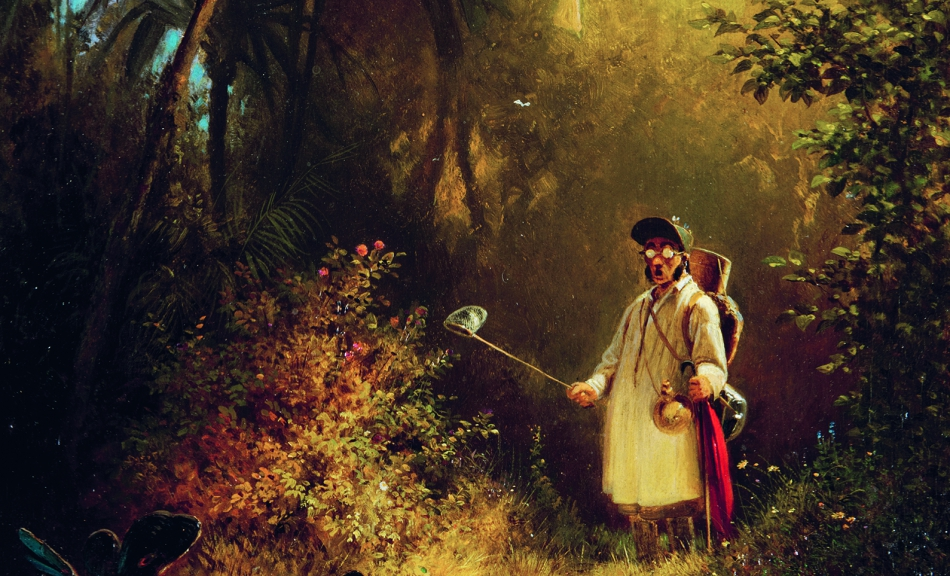 Carl Spitzweg, The Butterfly Hunter, c. 1840 © Museum Wiesbaden, Dauerleihgabe der Bundesrepublik Deutschland | permanent loan of the Federal Republic of Germany Foto | Photo: Museum Wiesbaden